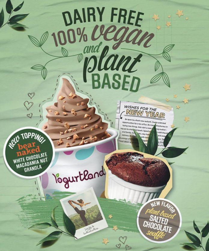 Yogurtland New Plant-Based Salted Chocolate Soufflé Frozen Yogurt hero